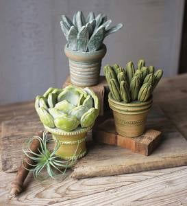 Clay Succulents with Pots Set of 3