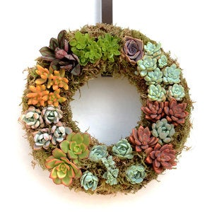 Multi-Colored Succulent Wreath