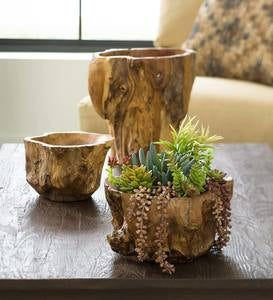 Hand Crafted Teak Root of the Earth Bowls