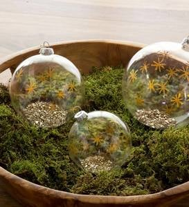 Glass Star Ball Ornaments