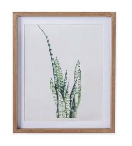 Framed Botanical Watercolor Print Set of 4
