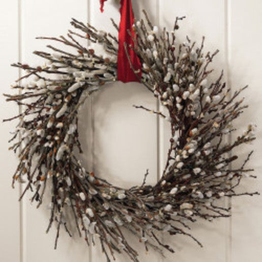 Pussy Willow Wreath - 22""