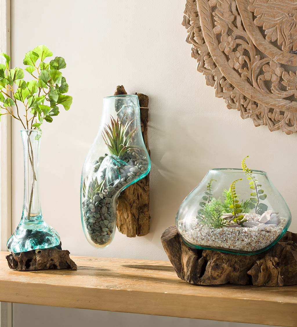 Teak Wood Root and Blown Glass Terrarium Sculpture