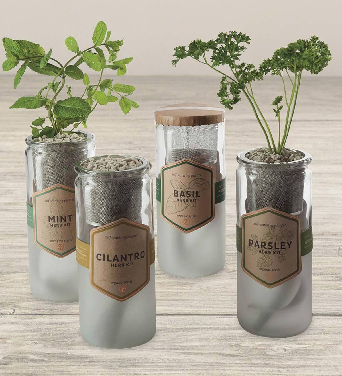 Organic Herb Garden Kit Vivaterra