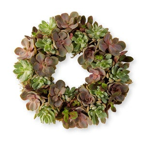 Echeveria Wreath