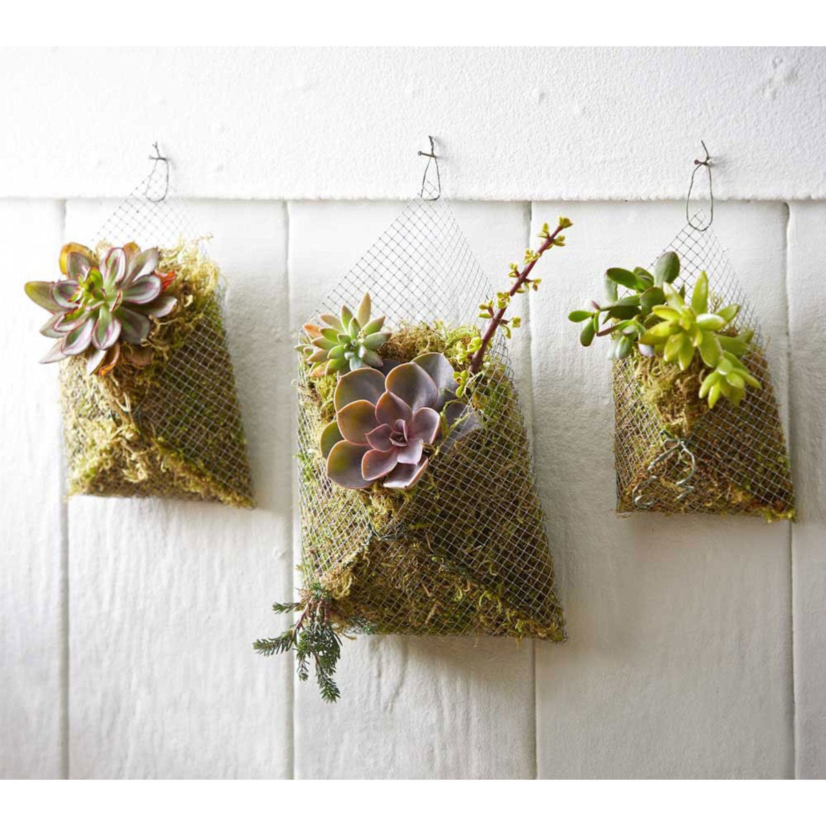 Succulent Wall Pockets, Set of 3
