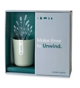 Mood Plant Gift Boxes