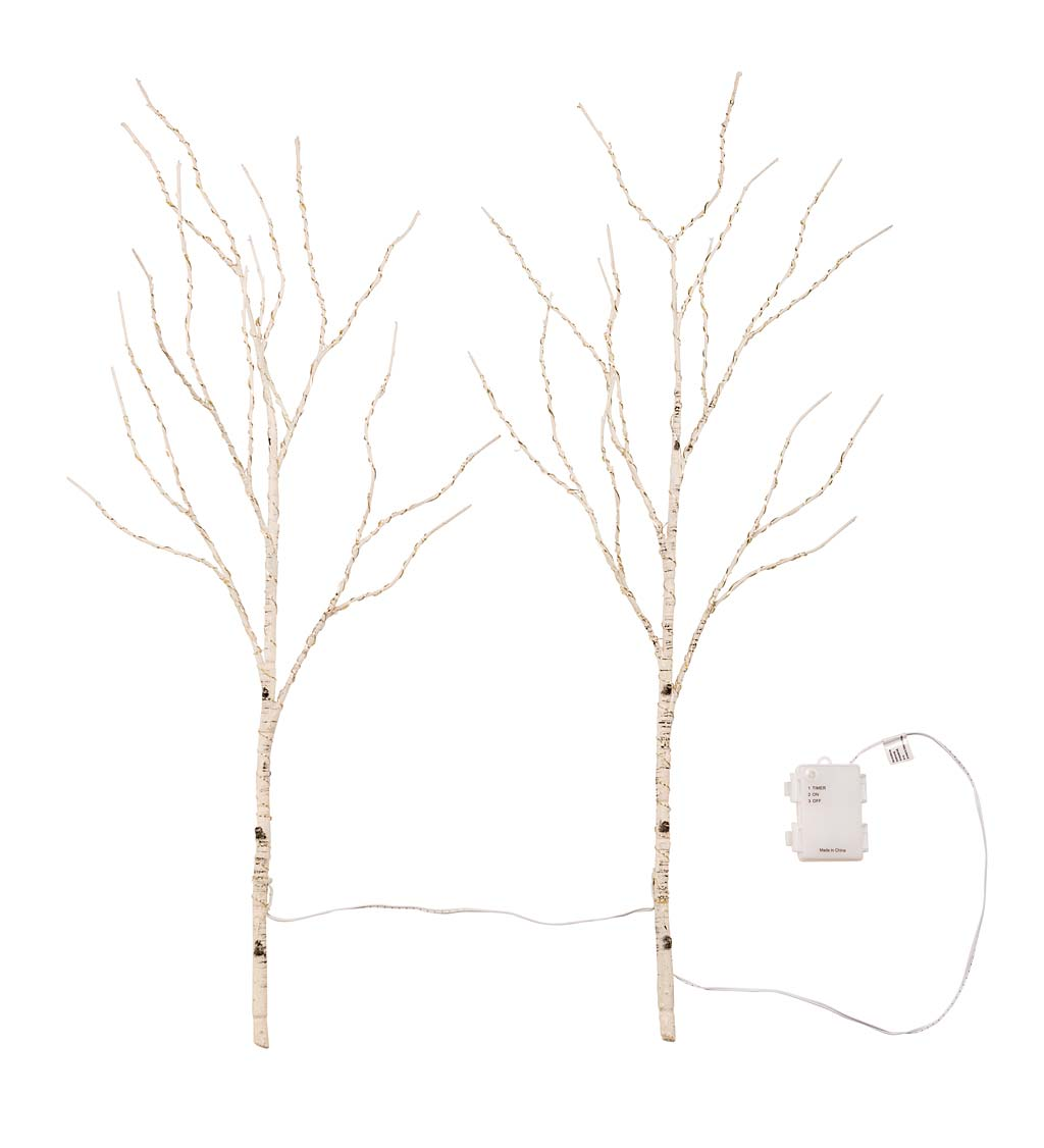Set of 2 Connected Indoor/Outdoor Lighted Birch Branches