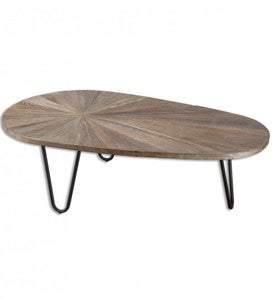 Leveni Iron and Reclaimed Elm Coffee Table