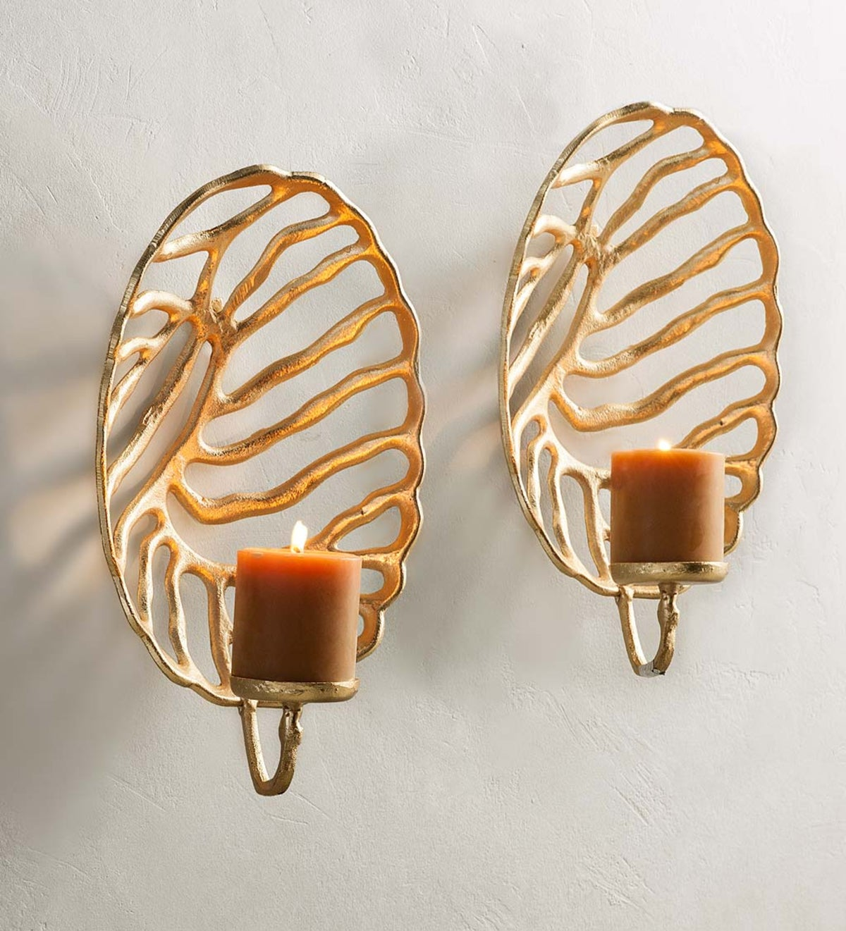 Golden Coral Wall Sconces